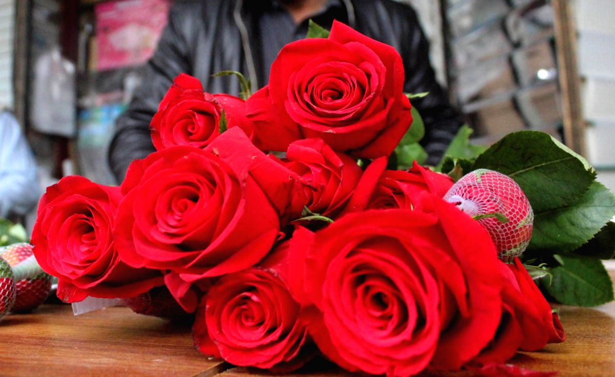 Valentine's Day- Red Roses to gift your valentine