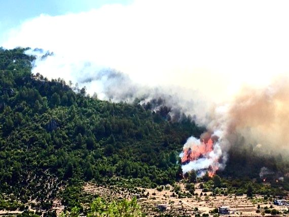 Wildfire engulfs power plant in Turkey, prompts evacuation