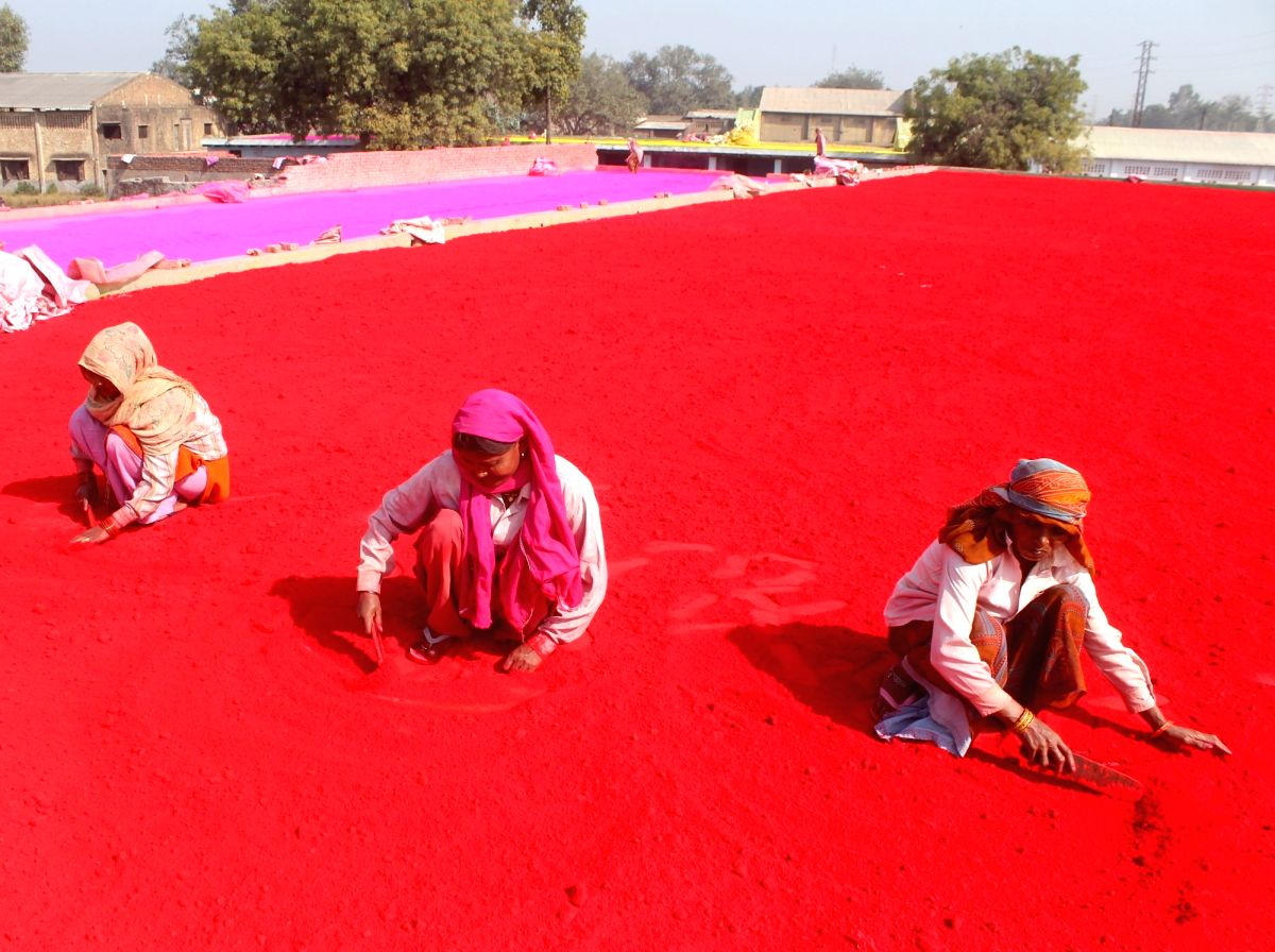 Women busy making color powders ahead of Holi in Mathura.