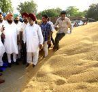 Amritsar: Amarinder Singh visits  Raja Sansi grain market