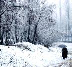 Anantnag: Snowfalls
