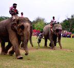 Boko: Suwori festival
