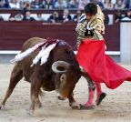 SAN ISIDRO FEST'S BULLFIGHTING