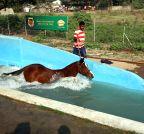 Mumbai: Mahalaxmi Race Course