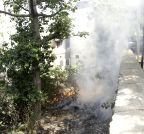 New Delhi: Garbage burnt in open