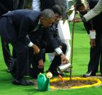 New Delhi: Obama plants a sapling at Rajghat