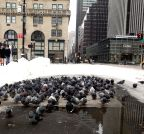 US-NEW YORK-SNOWSTORM-AFTERMATH