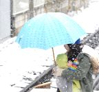 JAPAN-TOKYO-WEATHER-SNOW