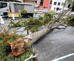 Typhoon Nepartak makes landfall in Japan