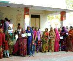 30% polling in Gujarat's Morva-Hadaf by-polls till 2 p.m.