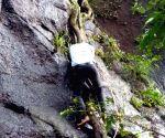Raigad (Maharashtra): 32 M'rashtra varsity staffers die as bus plunges in ravine
