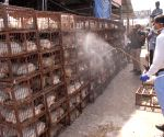 Gopal Rai visits Ghazipur chicken mandi