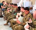 Aussie soldiers cuddle, feed koalas saved from bushfires