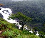 Kodagu (Karnataka): Mallalli waterfalls