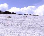 Snow in Gulmarg
