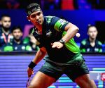 India have task cut out as Commonwealth TT C'ships get underway
