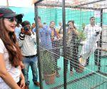 Ameesha Patel inaugurates pet show Babloo Zorang