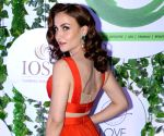 Grateful to be part of 'Chamma chamma' remake: Elli AvrRam