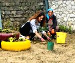 Kangana Ranaut plants sapling on birthday