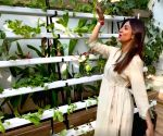 Shilpa Shetty offers fans a glimpse of her hydroponic farm