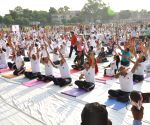 Seven day yoga celebrations end in AMU