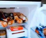 Allu Sirish hates 'foodie people's refrigerators'