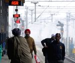 Punjab, Haryana sees some relief from cold wave