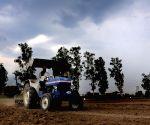 A farmer ploughs his field