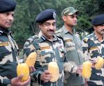 BSF seized heroin worth Rs 45 crores