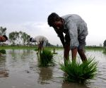 Centre, states must focus on containing Covid in rural sector ahead of Kharif sowing season
