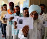 Over 43% voting till 3 p.m. in 7th phase