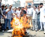 Hindu organisations burn an effigy of SAD leaders