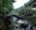 Rains lash Kolkata