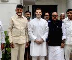 AP CM Chandrababu Naidu meets Rahul Gandhi
