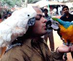 'Bengaluru Pet Show 2015' - press conference
