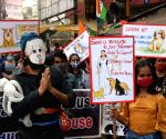 Free Photo: Animal lovers took part in a protest rally in Kolkata.
