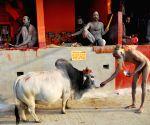 Pilgrims gather at Gangasagar island for a holy dip ahead of Makar Sankranti