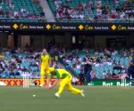 Free Photo: Aus vs Ind 2nd ODI: Warner hurts groin, to undergo scan