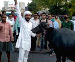 Free Photo:  Bihar: Bandh supporters came out on the road with buffalo, RJD MLA demonstrated with a banana on his head