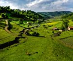 CHINA SHAANXI BAOJI GUANSHAN GRASSLAND