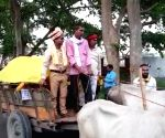 Blast from the past: 'Baraat' goes on bullock cart