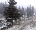 More snow, rain likely in J&K, Ladakh on Feb 2-3