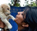 'Bangalore Pet Show 2015'