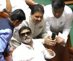 Miffed Karnataka Congress MLA Anand Singh resigns