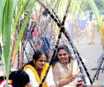 People prepare Pongal on Sankranti