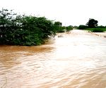 Maha flood situation eases, toll climbs to 192, 25 still missing
