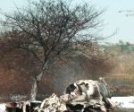HAL under scanner as its upgraded Mirage-2000 crashes killing two IAF pilots
