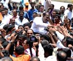 Karnataka Assembly elections - Workers celebrate the party's performance