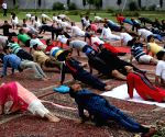 BJP's J&K unit to organise Yoga Day events at booth level