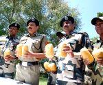 Pulmoran (Punjab): 10 kg heroin recovered